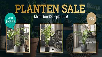 Actie: 50% korting op planten