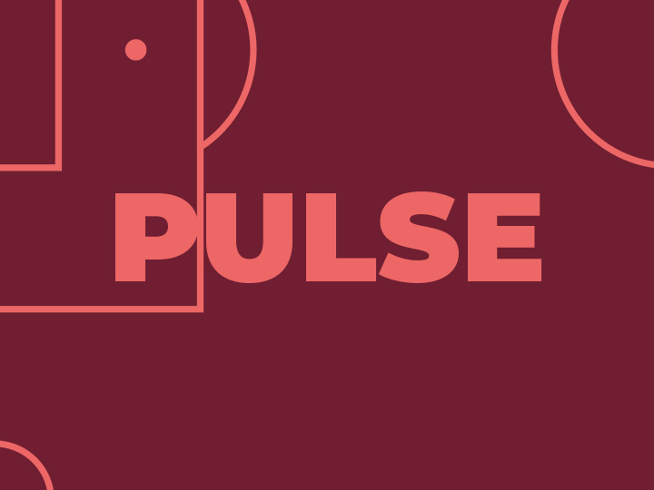 A Day In The Life of Pulse