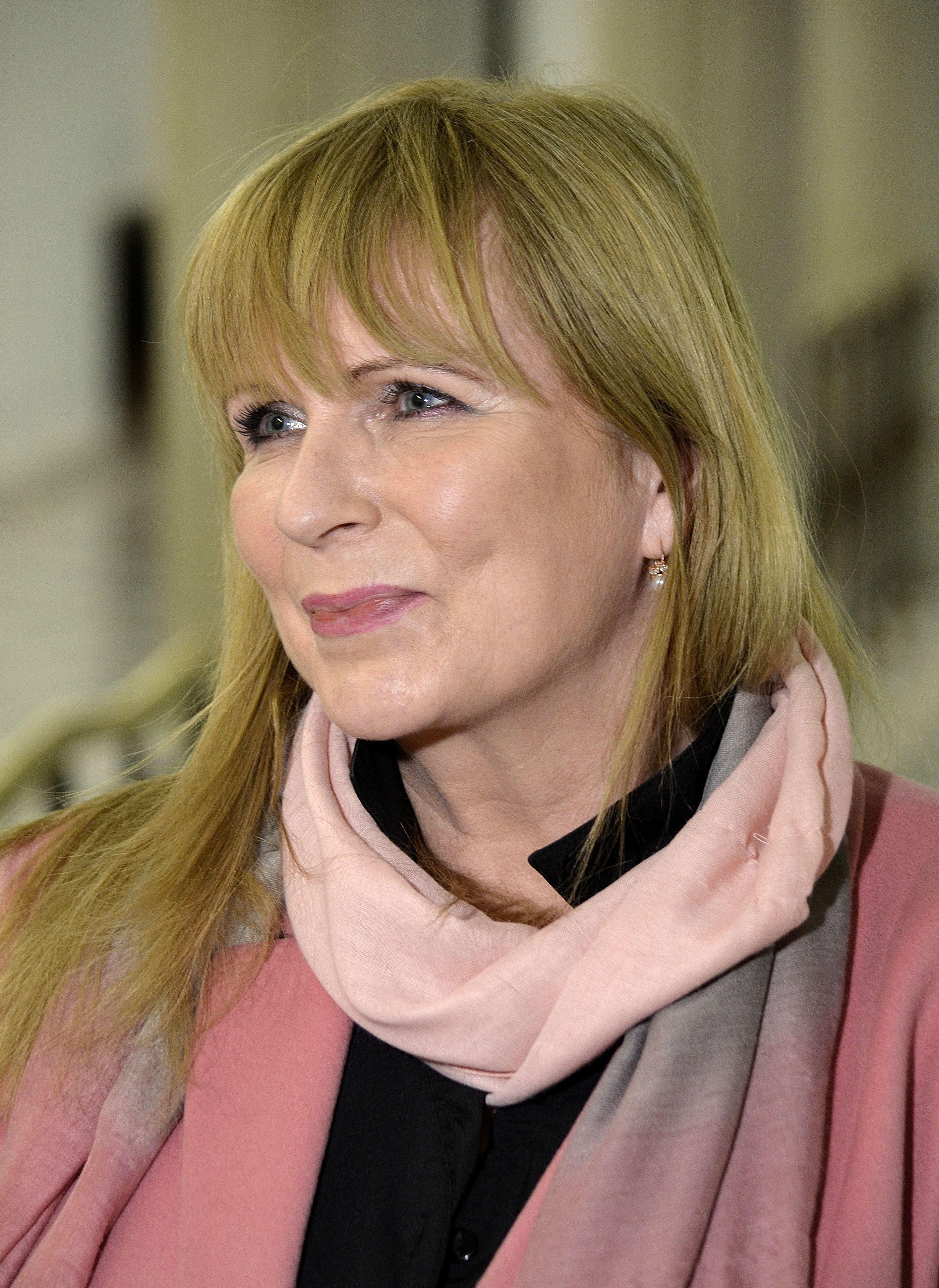 Małgorzata Gosiewska Sejm 2015