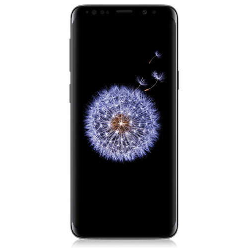 Samsung Galaxy S9 (front view)