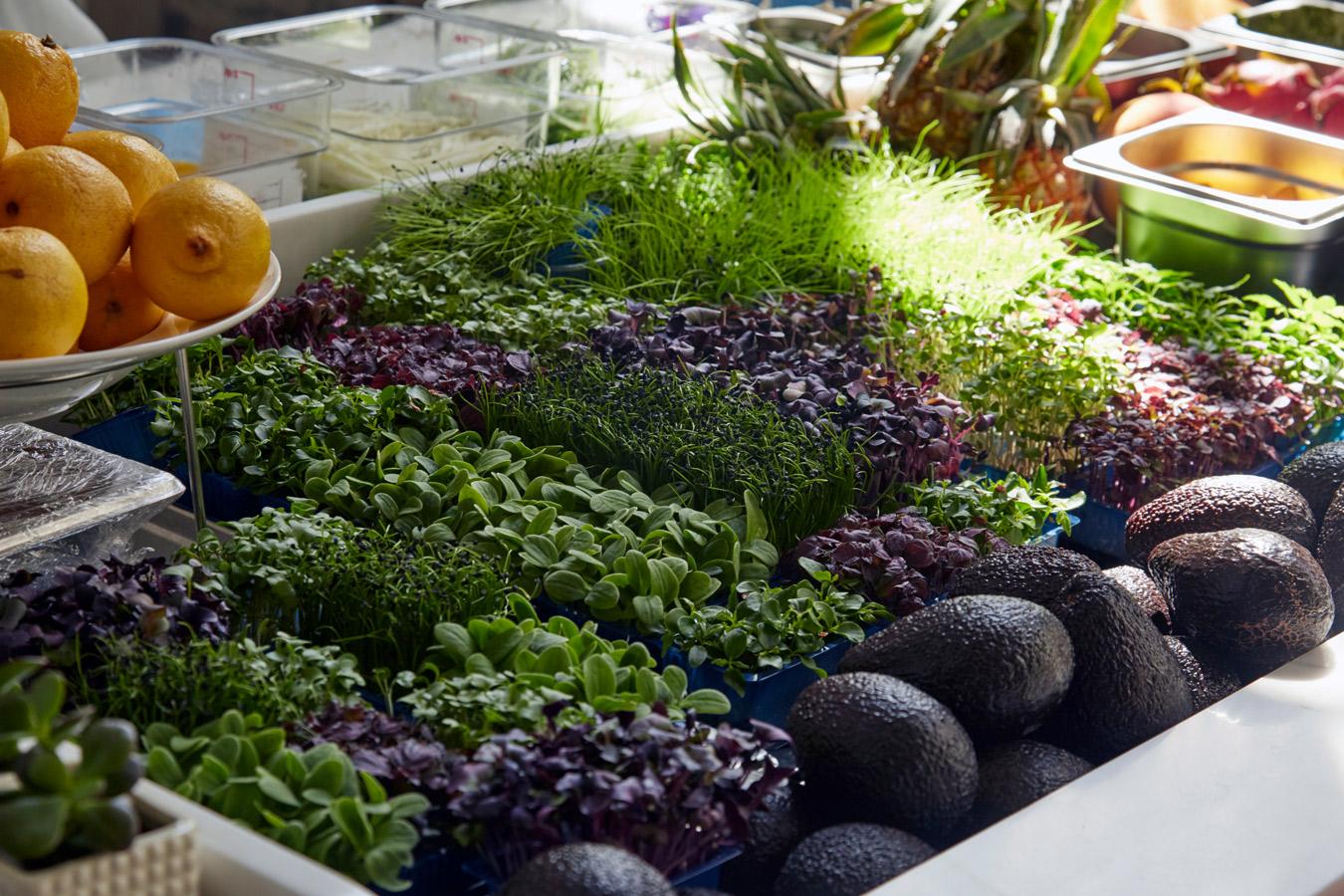 Malibu Kitchen   Healthy Californian Food City of London