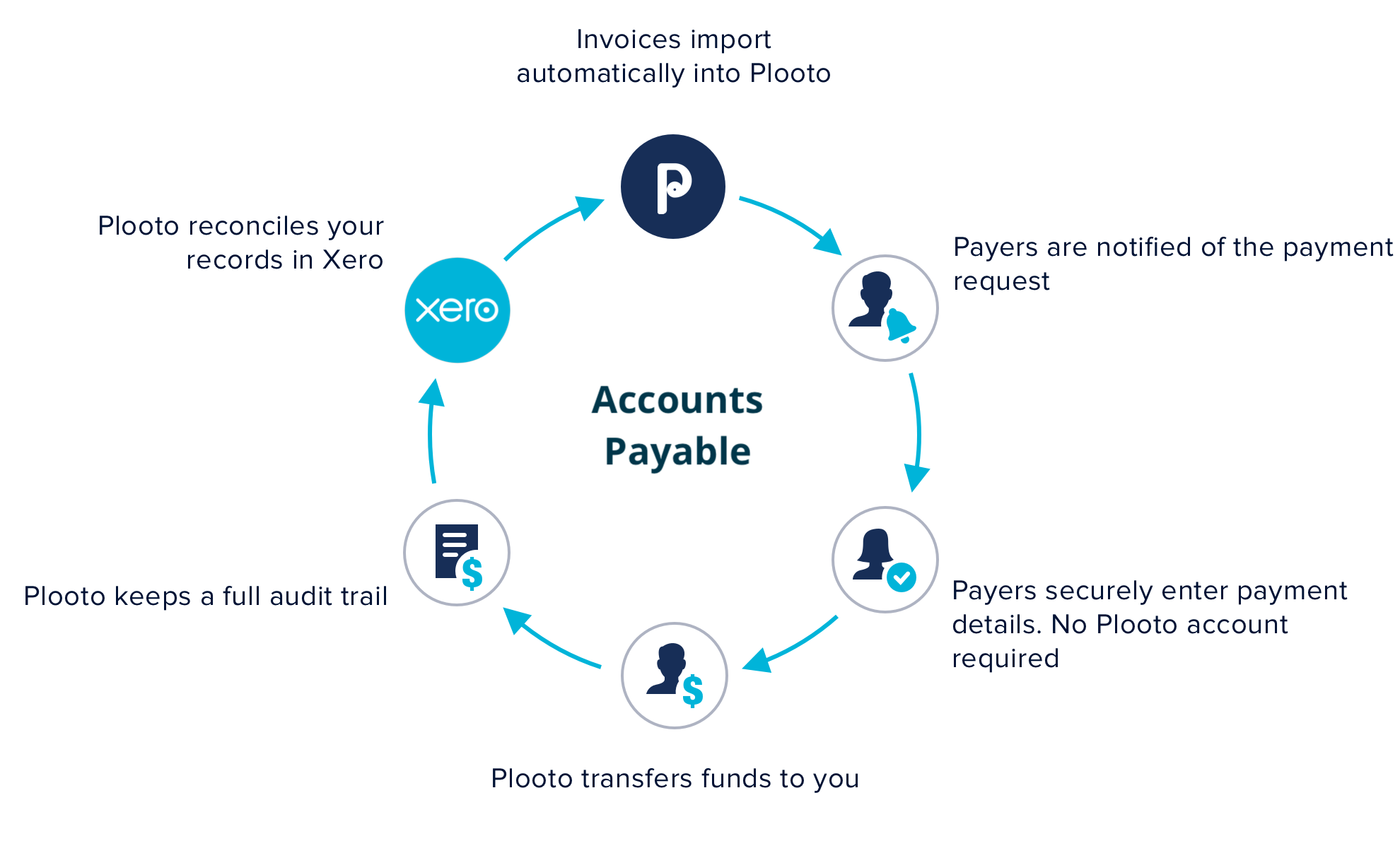 plooto payable xero2