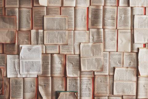Boekverslagen van Scholieren.com