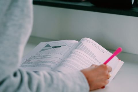 Examenbundel of Samengevat voor Bedrijfseconomie bestellen?