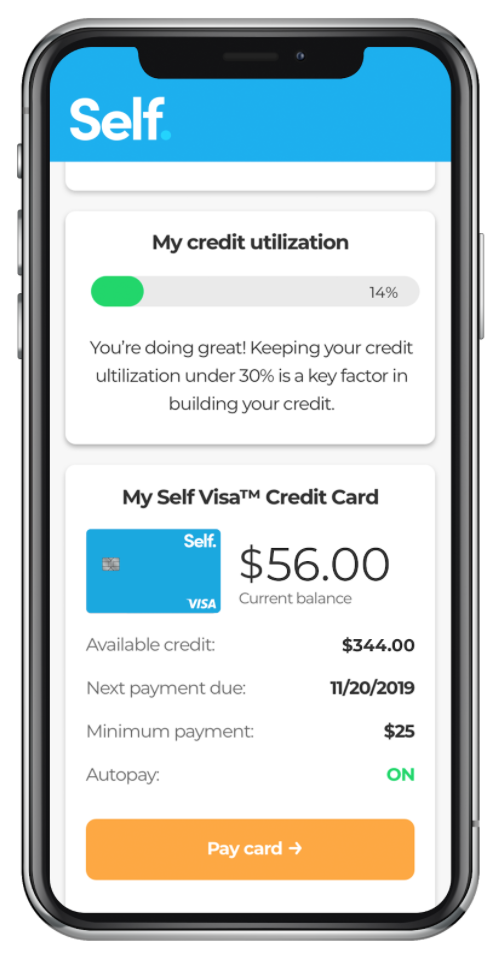 Credit usage tracker at Self
