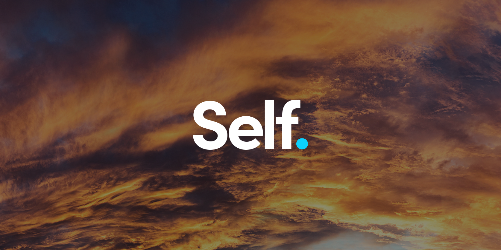 Self company header 6