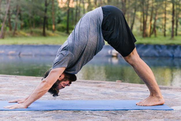 Downward dog, man, Norman, stretching