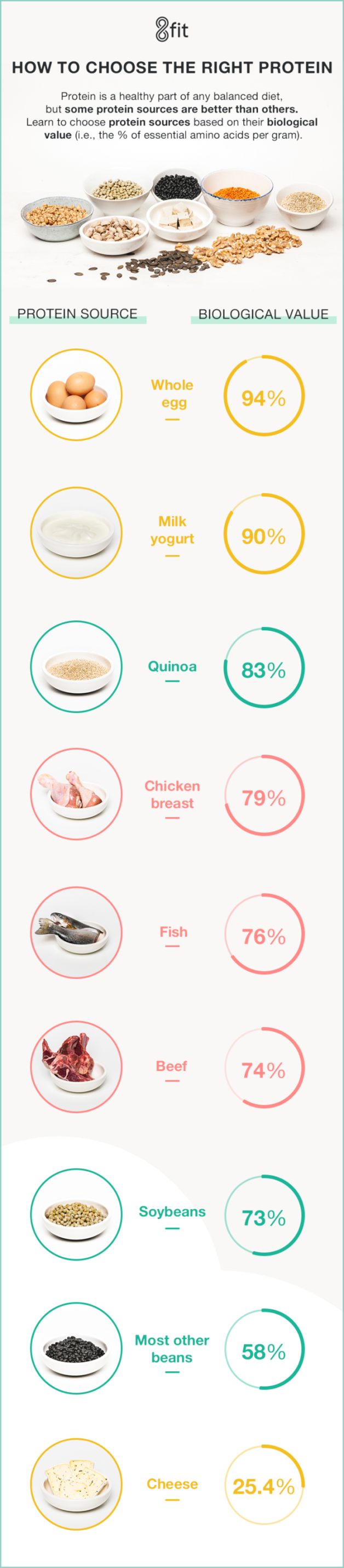 how-to-choose-your-proteins infographic protein sources
