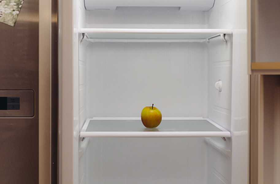 Apple in empty fridge