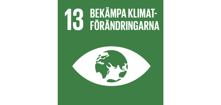 FN-mål illustration klimataction