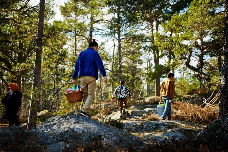 Two children and two adults walking in the woods with picnic hampers