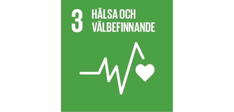 Bild som beskriver FNs utvecklingsmål 3