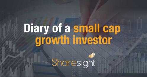 small cap growth investor