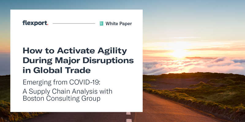 BCG Agility During Disruption White Paper
