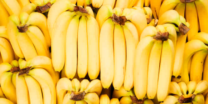Tales from the Supply Chain: Why the Bananas You Love May Go Extinct (Again)