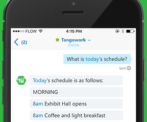 chatbot-screenshot-square-on-green-300x250