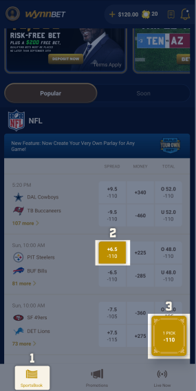 In Sportsbook area, create bet of $20 or more, with odds between -150 and +10,000.