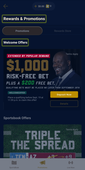 Click Deposit Now button to opt-in.