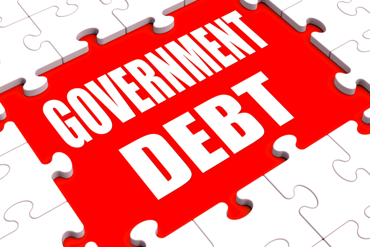 Government Debt Puzzle