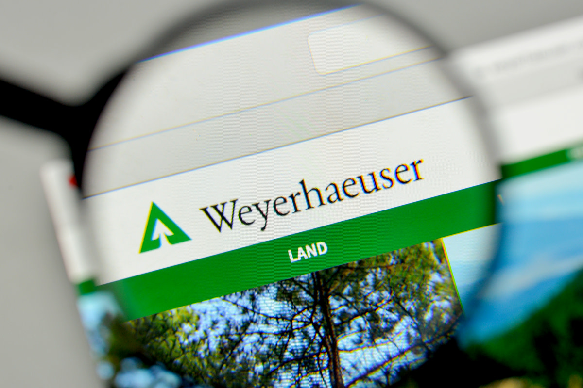 Weyerhaeuser logo on the website homepage