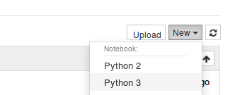 Figure 1. Screenshot illustrating the generation of a new python 3 notebook.