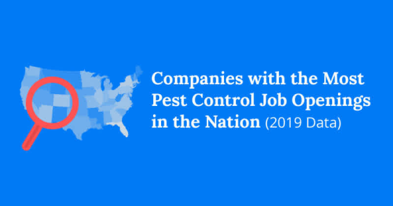 How Much Does A Pest Control Technician Make Updated For