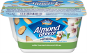 Almond Yogurt Alternative + Toasted Almonds