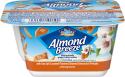 Almondmilk Yogurt + Salted Caramel Flavored Almonds and Pretzels