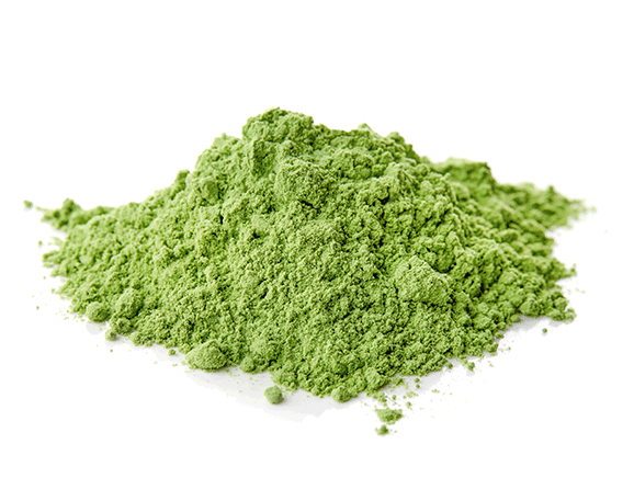 Chlorella from Germany