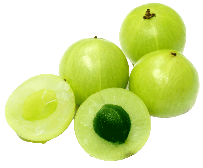 Amla Berry from India