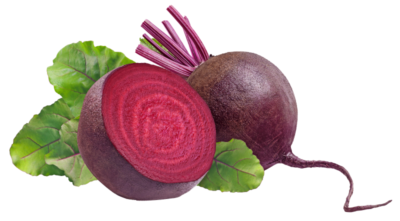Beetroot from Canada