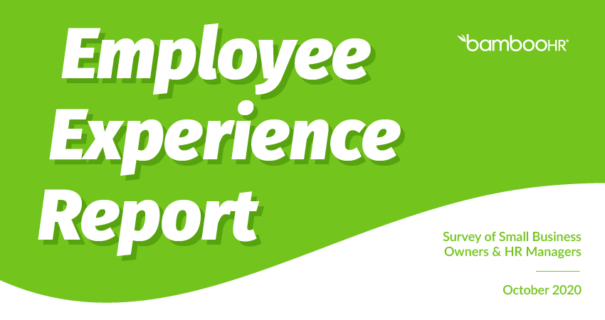 The Employee Experience Report