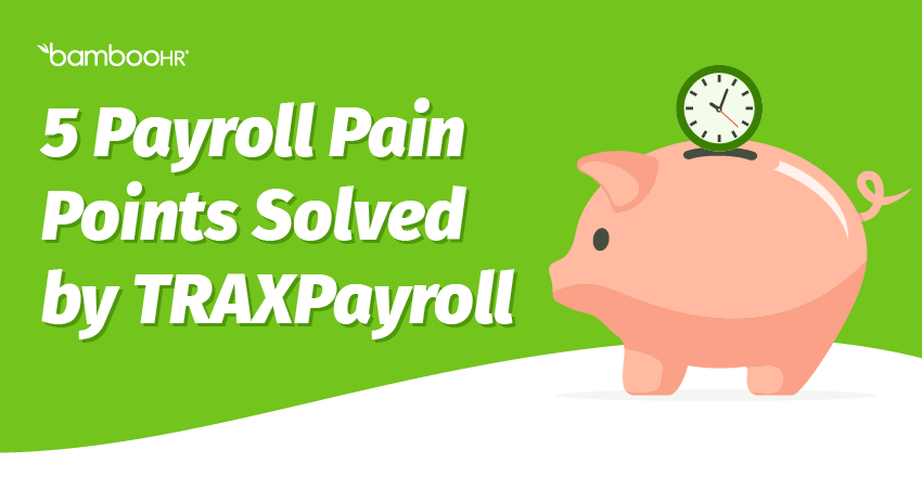 5 Payroll Pain Points Solved by TRAXPayroll
