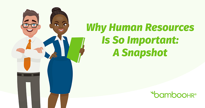 Why Human Resources Is So Important: A Snapshot