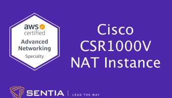 ANS Exercise 2.1: Cisco CSR1000v NAT Instance