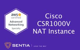 ANS Exercise 2.1: Cisco CSR1000v NAT Instance | Sentia