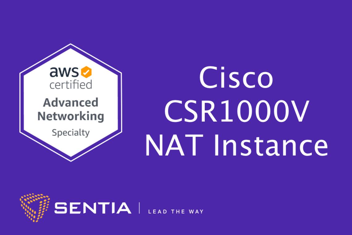 ANS Exercise 2.1: Cisco CSR1000v NAT Instance