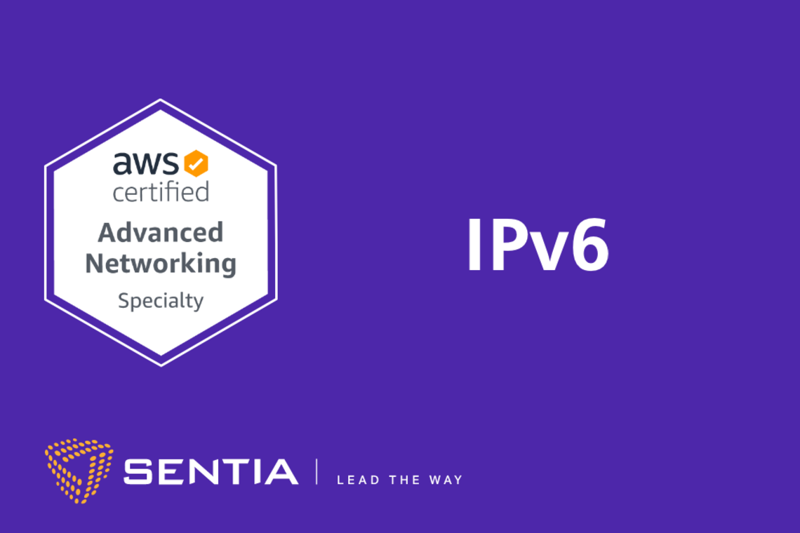 ANS Exercise 1.1: Subnetting and Routing with IPv6