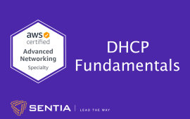 ANS Exercise 1.3: DHCP Fundamentals | Sentia