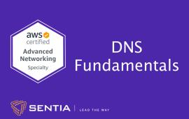 ANS Exercise 1.4: DNS Fundamentals | Sentia