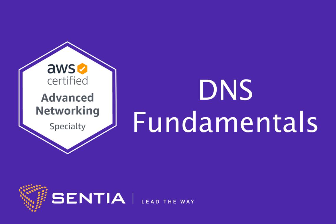ANS Exercise 1.4: DNS Fundamentals