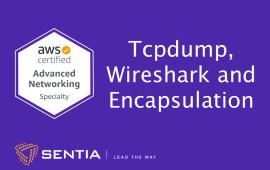 ANS Exercise 2.2: Tcpdump, Wireshark and Encapsulation | Sentia
