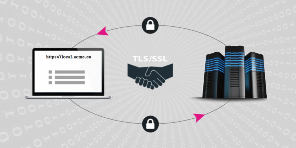 Using TLS/SSL in web application development