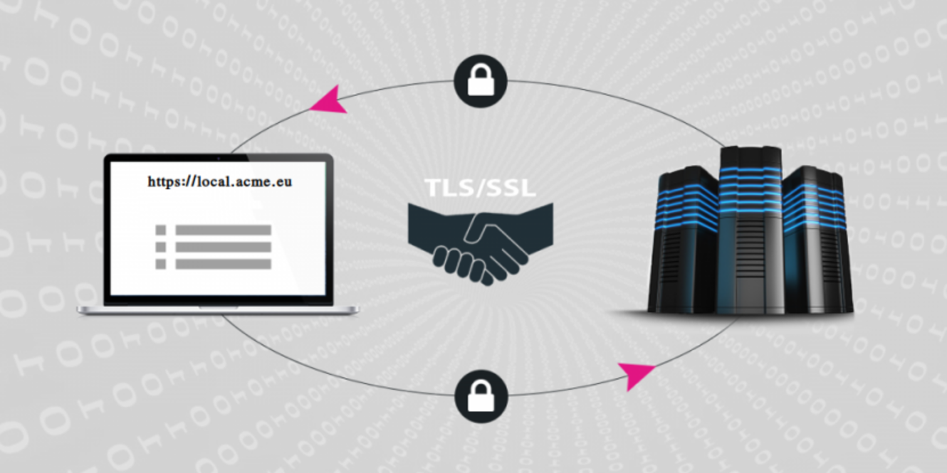 Using TLS/SSL in web application development