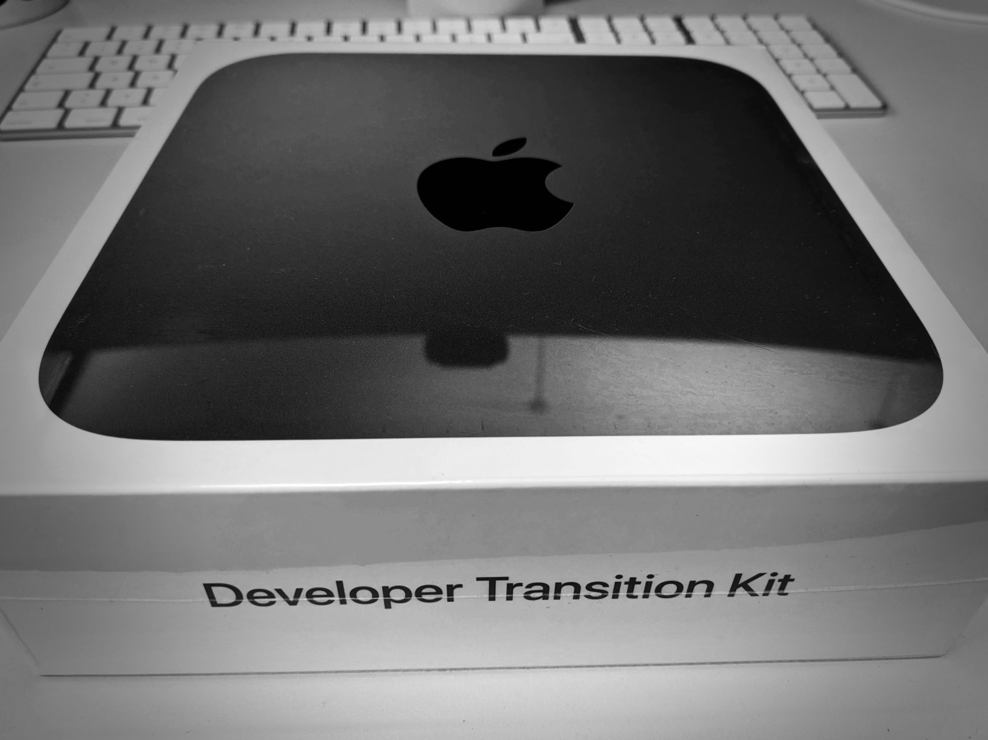 Apple Developer Transition Kit with Apple Silicon M1