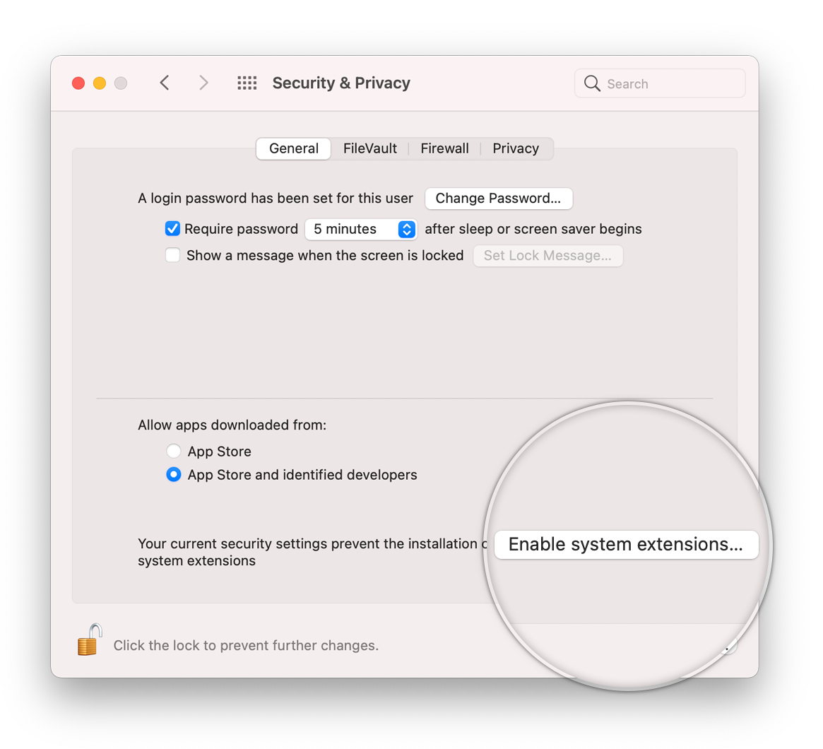 Help Enable System Extensions Apple Silicon