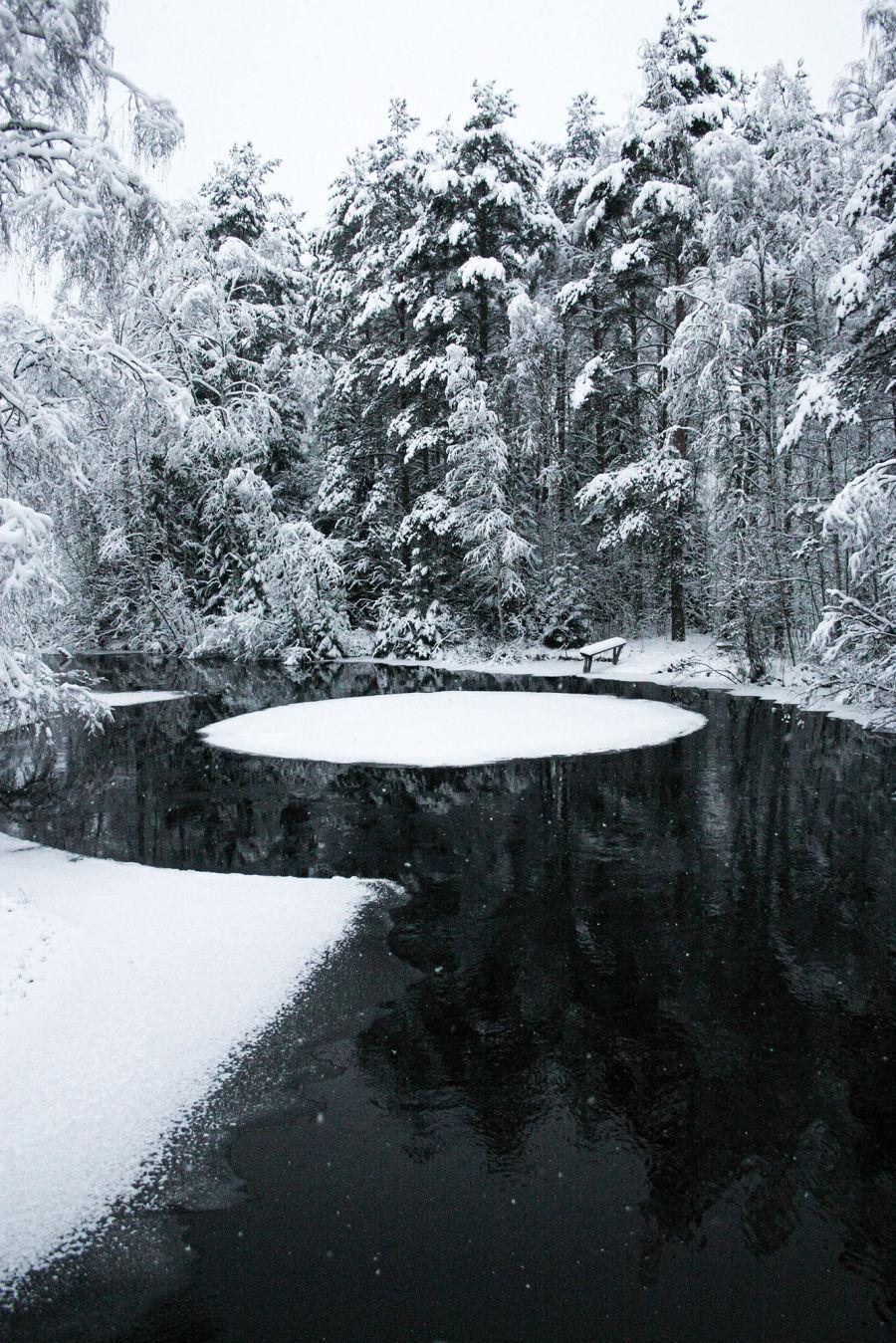 Metsän keskellä olevaan jokeen muodostunut ympyränmuotoinen jäälautta, joka pyörii joen virran voimalla