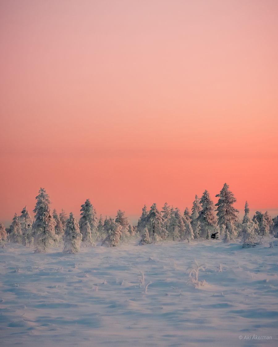 Metsämaisema, jossa näkyy lumen peittämää luontoa ja sen päällä kirkkaan oranssi taivas.