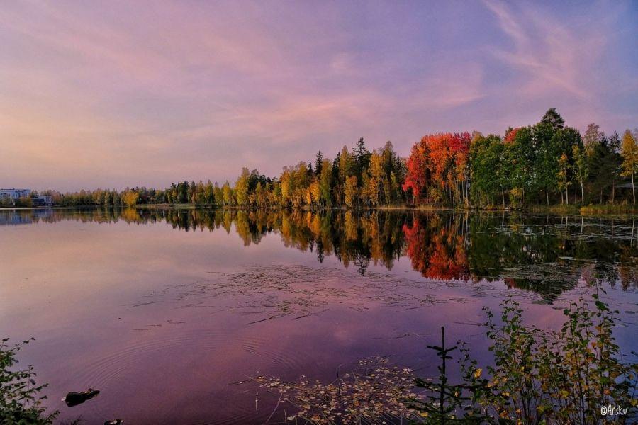 Värikäs maisema järvellä syksyllä