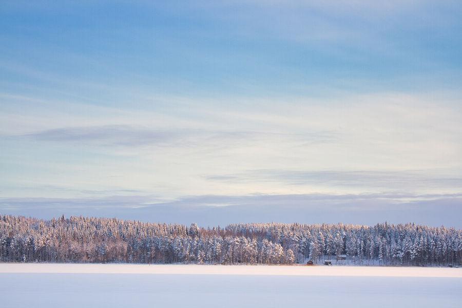 Jäätynyt järvimaisema, jonka taustalla näkyy vaaleita puita ja sininen taivas